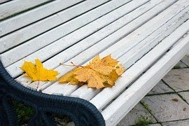 autumn-leaves-1735984__180
