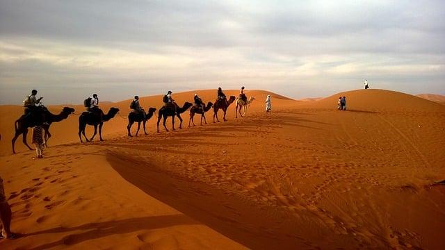 2/22(月)13:00〜『アラビアのロレンス』4Kレストア版 をNHK BSプレミアムで放送