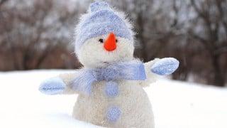【2016年さっぽり雪まつり】、NECがSDNを用いたネットワークにて8Kの映像配信を実施