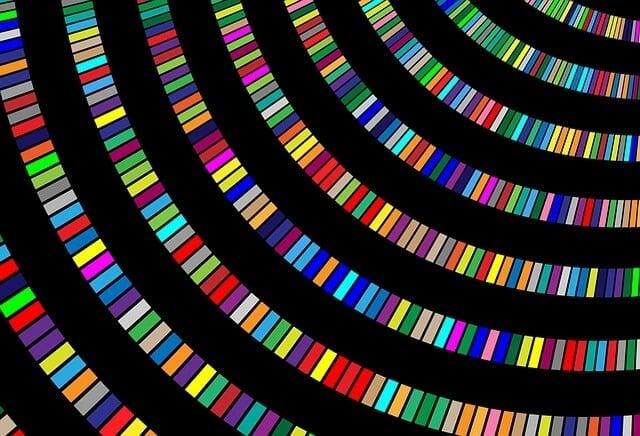 color-1093911_640