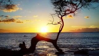 フルHDのBlu-rayもセット!Ultra HD Blu-ray「宮古島 癒しのビーチ」を発売。