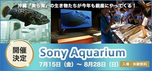sony-aqua-3