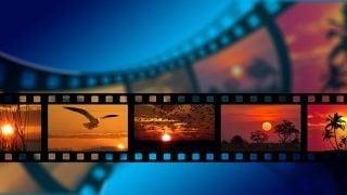 第29回東京国際映画祭(10月25日~11月3日)に4K修復作品を観に行こう!